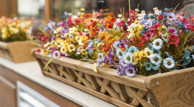Des fleurs pour votre balcon