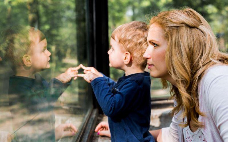 Optez pour un matériau durable pour vos fenêtres